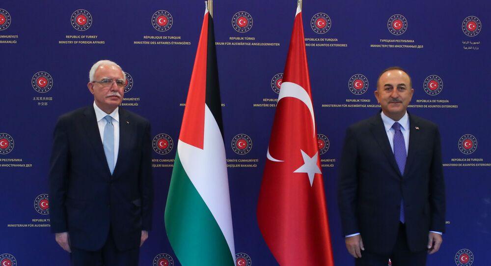 Mevlüt Çavuşoğlu - Riyad el-Maliki