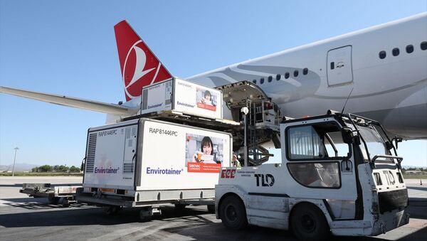 CoronaVac aşısının Türkiye'ye gelişi - Sputnik Türkiye