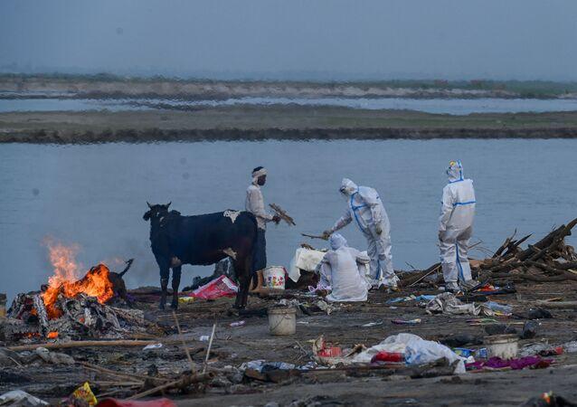 Ganj Nehri kıyısında bir Kovid-19 kurbanının yakılması (Hindistan'ın Uttar Pradesh eyaletinin Garhmukteshwar kenti)