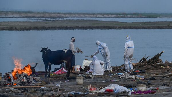 Ganj Nehri kıyısında bir Kovid-19 kurbanının yakılması (Hindistan'ın Uttar Pradesh eyaletinin Garhmukteshwar kenti) - Sputnik Türkiye