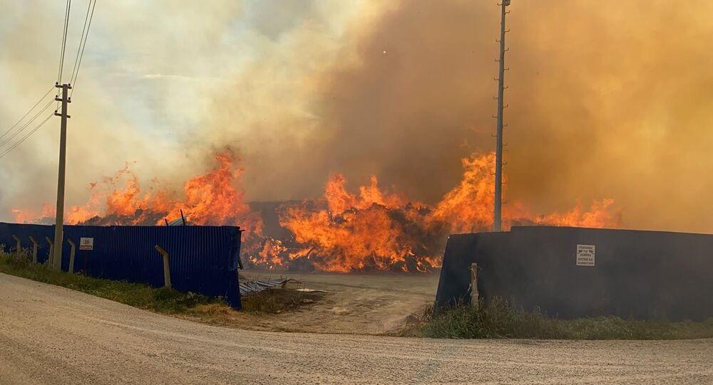 Afyonkarahisar'daki biyokütle enerji tesisinde 2 hafta aradan sonra yine yangın çıktı