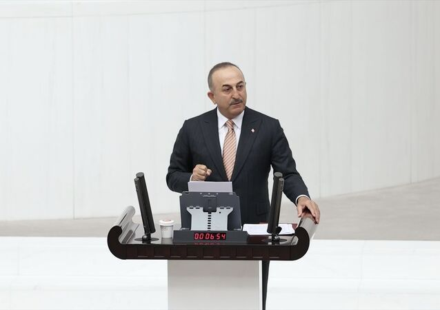 Dışişleri Bakanı Mevlüt Çavuşoğlu, TBMM Genel Kurulu'nda Gazze ve Kudüs'te yaşanan vahşet hakkında milletvekillerini bilgilendirdi.