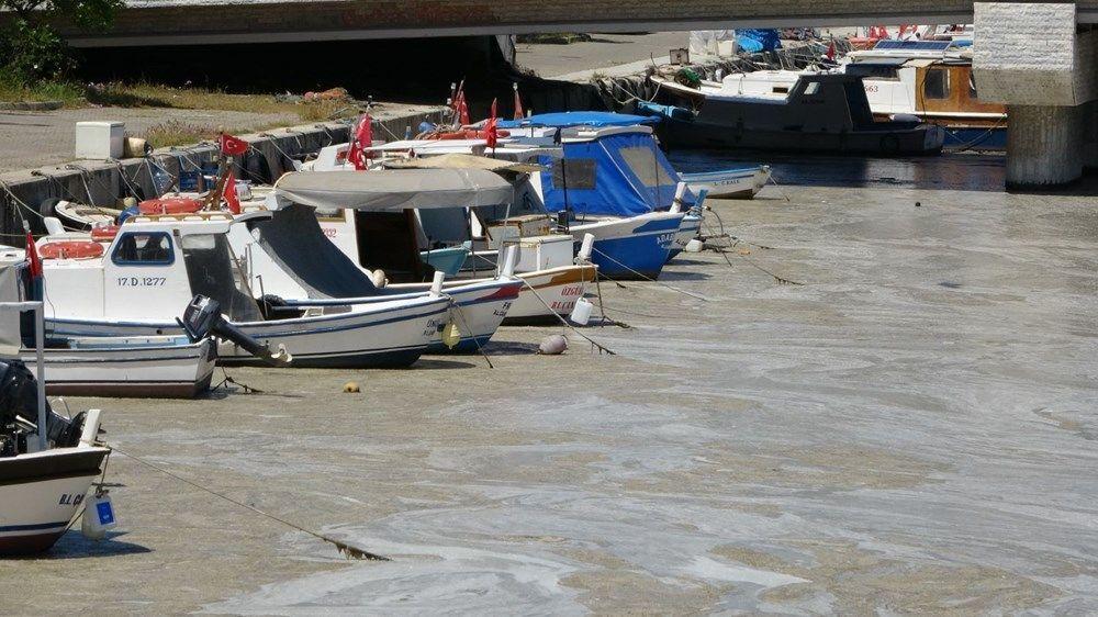 Müsilaj, endişelendiren görüntüsünün yanı sıra, avcılığı ve deniz canlılarını da olumsuz etkiliyor.
