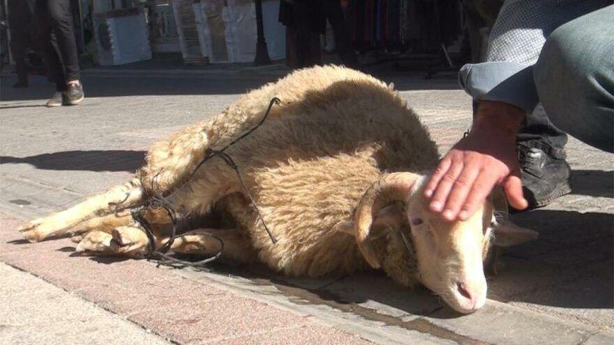 Kütahya'da Pekmezpazarı Caddesi esnafı coronanın bitmesi, ölümlerin sona ermesi için kurban kesti.