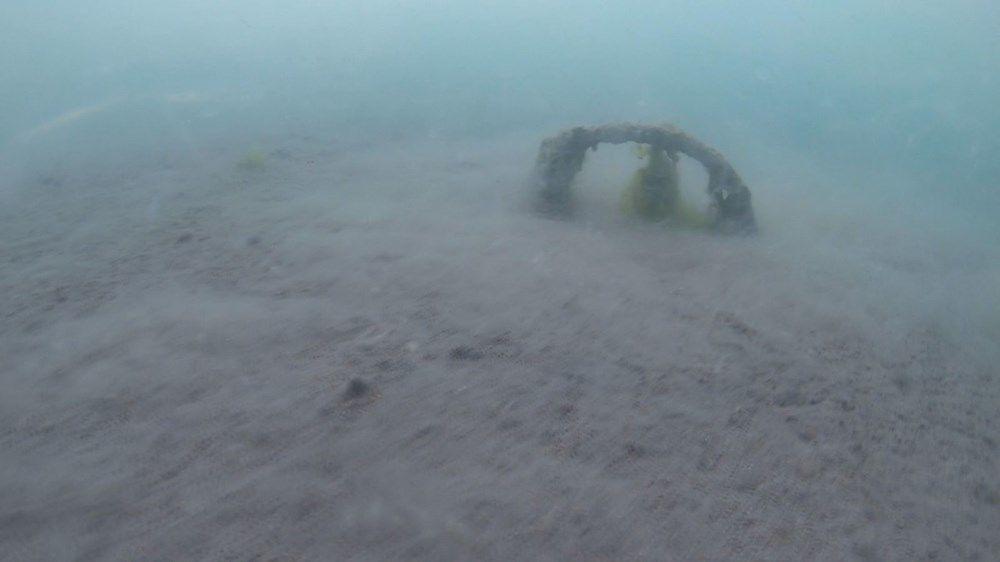 Şahintürk, Artık neredeyse dalışlarda balık göremiyoruz. Çünkü suda oksijen olmadığından, deniz salyasından dolayı balıklar uzaklaşıyor dedi.