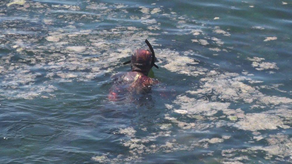 Şahintürk,  Denizin altında balıkları gördüğümüzde ilerliyoruz. Suda çok kötü bir koku oluyor. Bazı bölgelerden atık bırakılıyor suya. Böyle olduğu zaman suya başımızı sokmadan çıkmamız gerekiyor dedi.