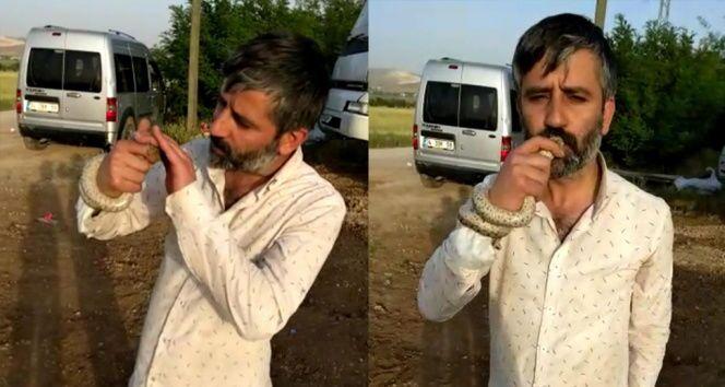 Elazığ'da bir adam yılanı öptü
