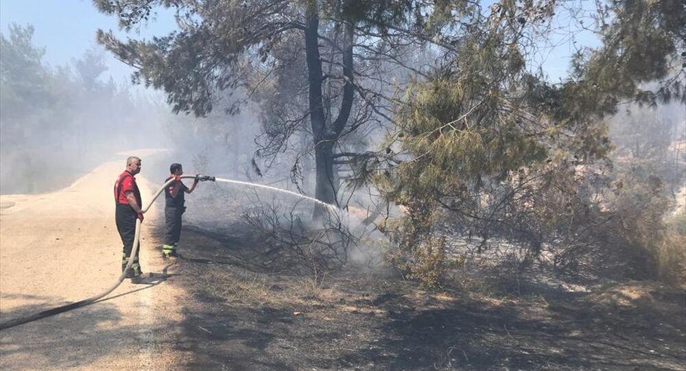 Adana Sarıçam'da orman yangını