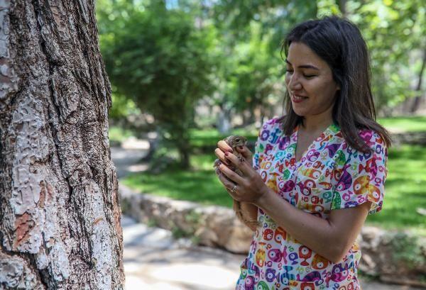 Antalya'da, fırtınada yuvalarını kaybeden 2 sincap yavrusunun bakımını üstlenen veteriner Damla Atay, doğaya bırakırken gözyaşı döktü