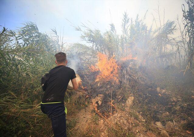 Antalya / orman yangını