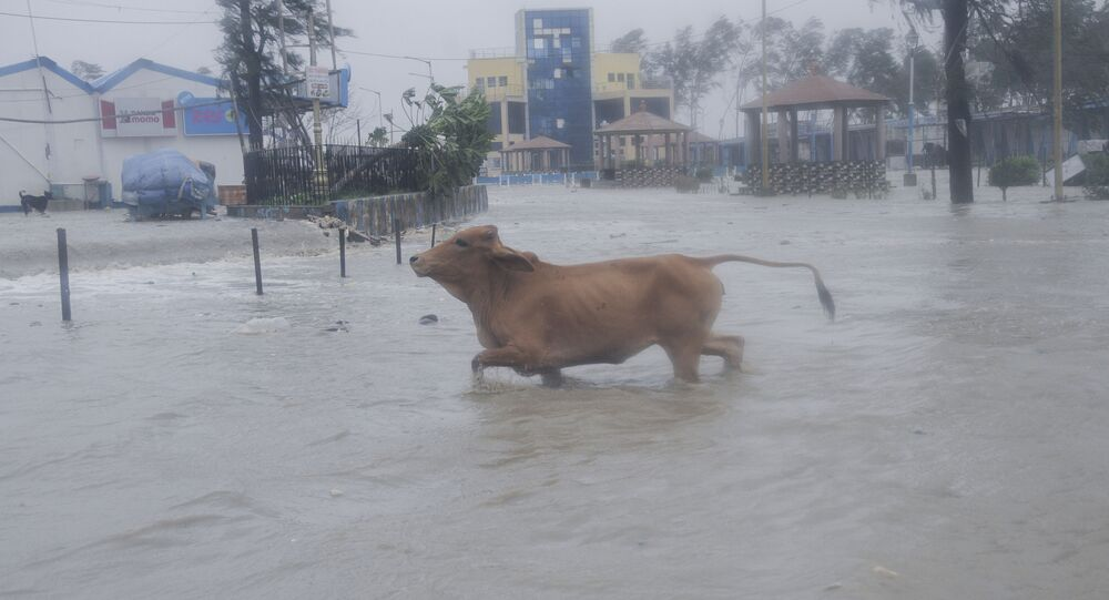 Hindistan'ı Yaas Kasırgası vurdu