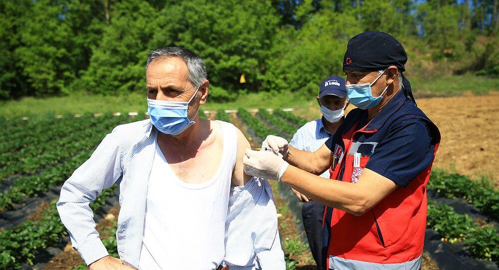 Tarlada aşı olan vatandaş