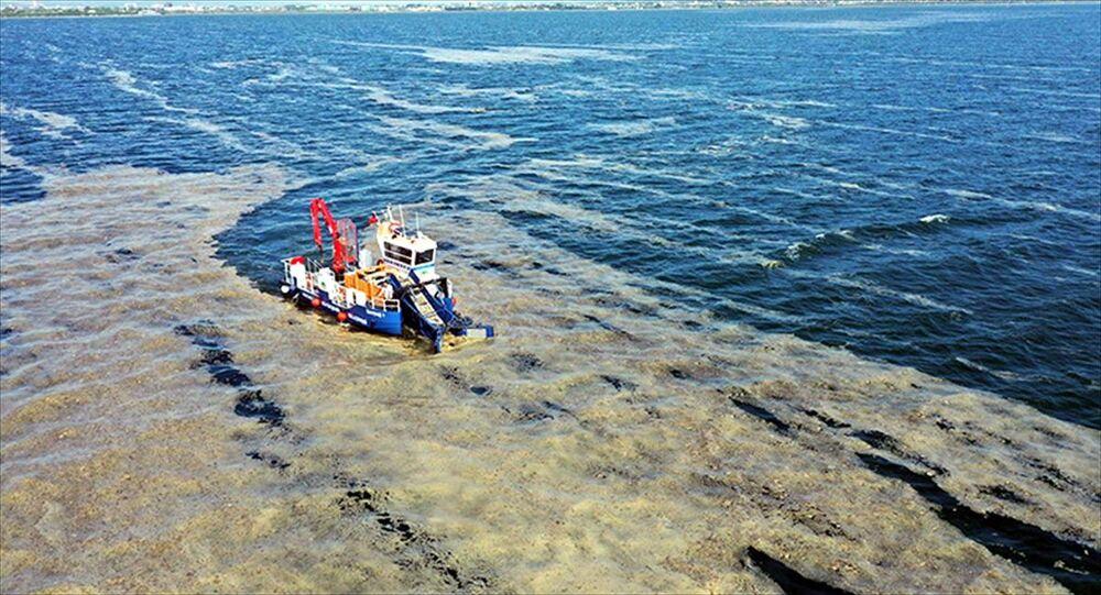 Kocaeli Büyükşehir Belediyesi, İzmit Körfezi'nde su yüzeyinden 50 günde 150 ton deniz salyası (müsilaj) topladı.