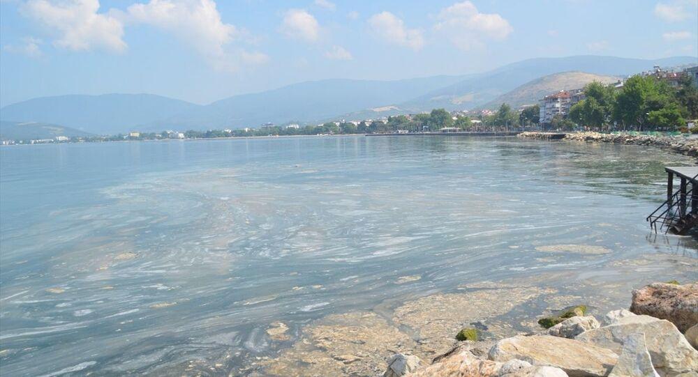 Marmara Denizi'nin güneyinde Balıkesir sınırları içinde kalan sahil boyunda etkili olan deniz salyasının yüzeydeki yoğunluğu azalıyor.