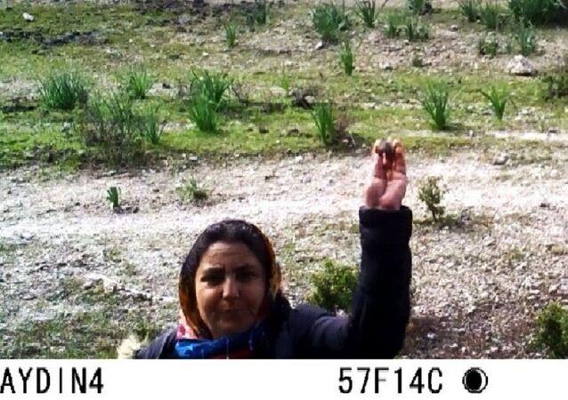 Aydın'da fotokapana taş atan kadın