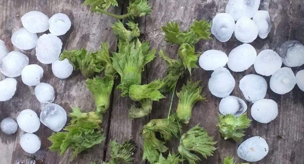 Ordu dolu yağış