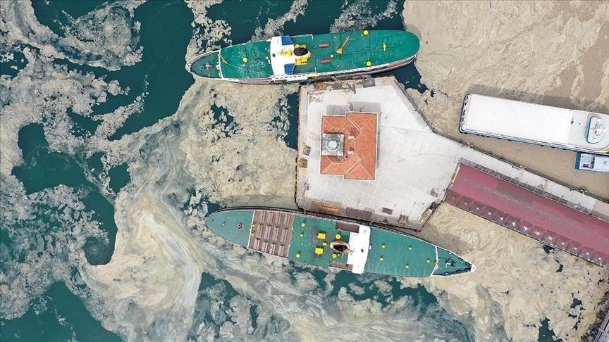 Marmara Denizi-müsilaj-deniz salyası