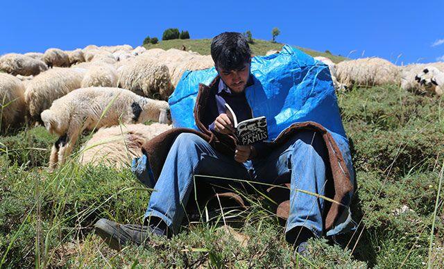 Çobanlık yaparken Robert Lisesi'ni kazandı, hedefinde Hollanda'da bulunan Tilburg Üniversitesi var
