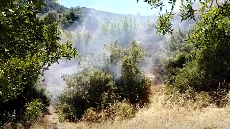 Spil Dağı'nda çıkan orman yangınında 10 dönümlük alan zarar gördü