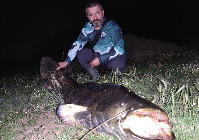 Dev yayın balığı yakaladılar: Ölçüp, hatıra fotoğrafı çekildikten sonra yaşam alanına bıraktılar