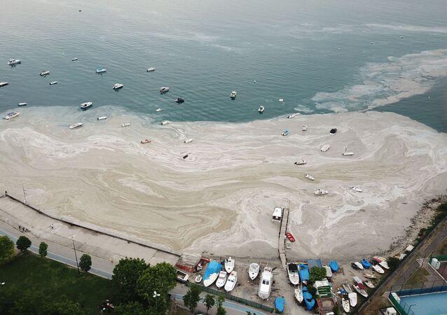 Fenerbahçe Sahili müsilaj deniz salyası