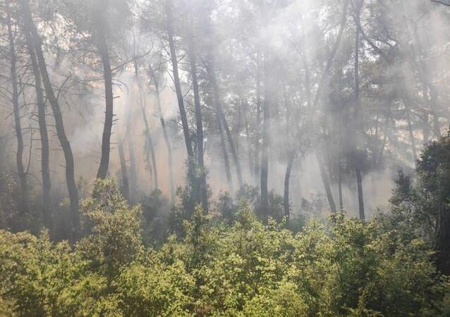 Karatepe Milli Parkı yangın