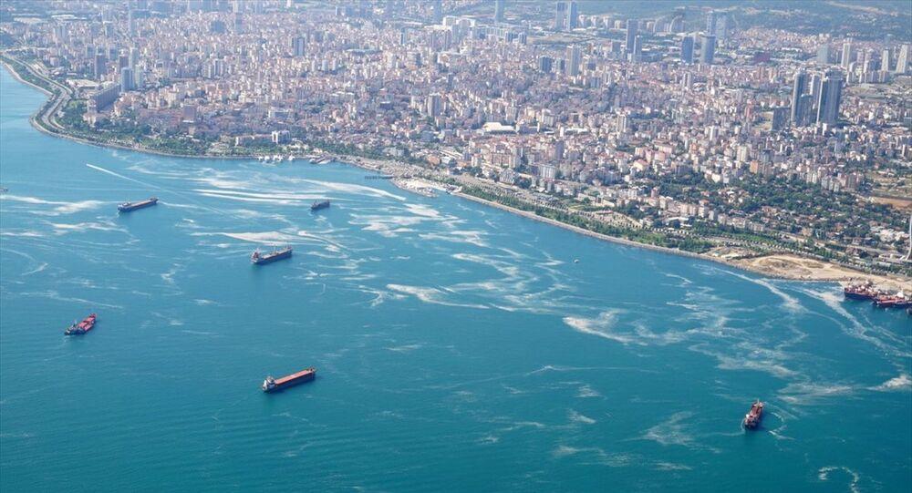 Marmara Denizi müsilaj deniz salyası