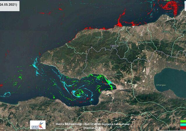 Marmara Denizi'ndeki müsilajın yoğunluk haritası çıkarıldı