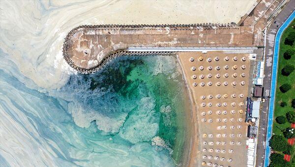 Marmara Denizi kıyılarını kaplayan müsilajın (deniz salyası) Caddebostan Sahili'ndeki yoğunluğunun arttı. - Sputnik Türkiye