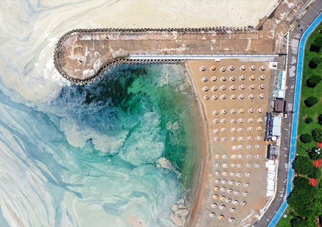 Marmara Denizi kıyılarını kaplayan müsilajın (deniz salyası) Caddebostan Sahili'ndeki yoğunluğunun arttı.
