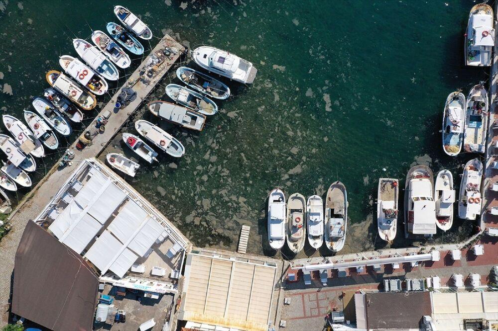 Marmara Denizi sahillerinde görülen ve rüzgarın etkisiyle kıyılara sürüklenen müsilaj (deniz salyası) Bozcaada iç limanda az miktarda görüldü. Ada genelinde ise müsilaja rastlanmadı.