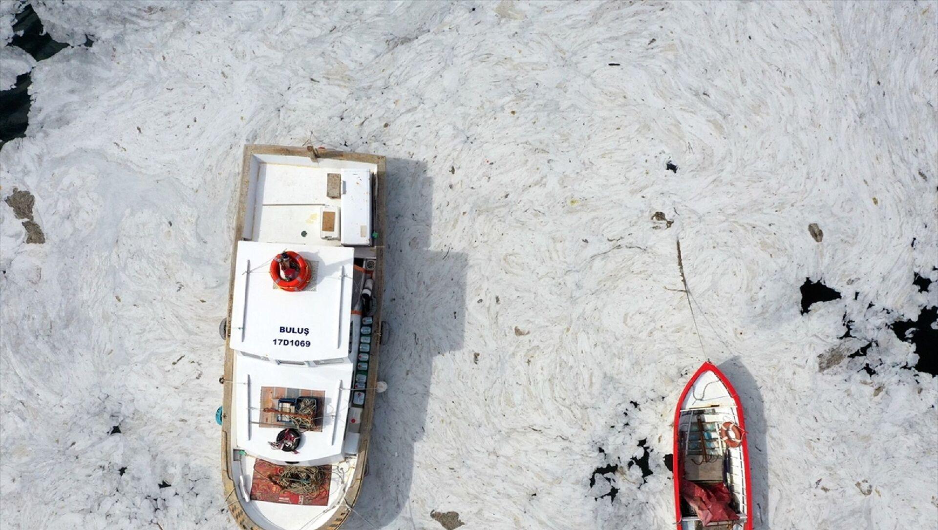 Marmara Denizi sahillerinde görülen ve rüzgarın etkisiyle kıyılara sürüklenen müsilajın (deniz salyası) Tarihi Gelibolu Yarımadası'ndaki yoğunluğu drone kamerasına yansıdı. Kentte etkili olan rüzgarla yön değiştiren müsilaj, Tarihi Gelibolu Yarımadası kıyılarında etkili oldu. Eceabat'ta Çamburnu mevkisi ile Kilitbahir Kalesi, Barut İskelesi, Rumeli Mecidiye Tabyası bölgelerinde yoğunlaşan müsilaj, Şehitler Abidesi ve Morto Koyu'nda da etkili olduğu görüldü. - Sputnik Türkiye, 1920, 24.06.2021
