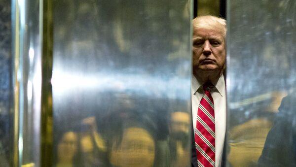 Donald Trump - Sputnik Türkiye