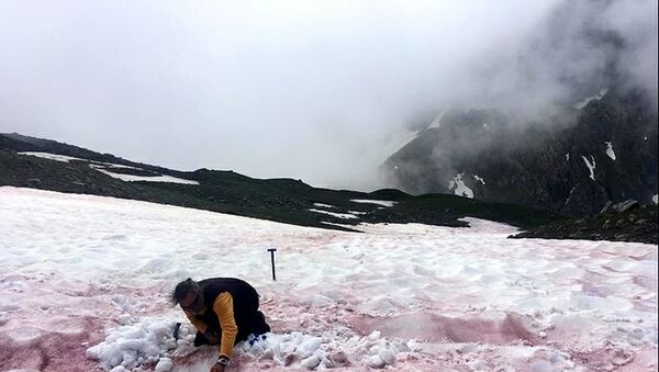 Alper'e kırmızı kar yağdı - Sputnik Türkiye