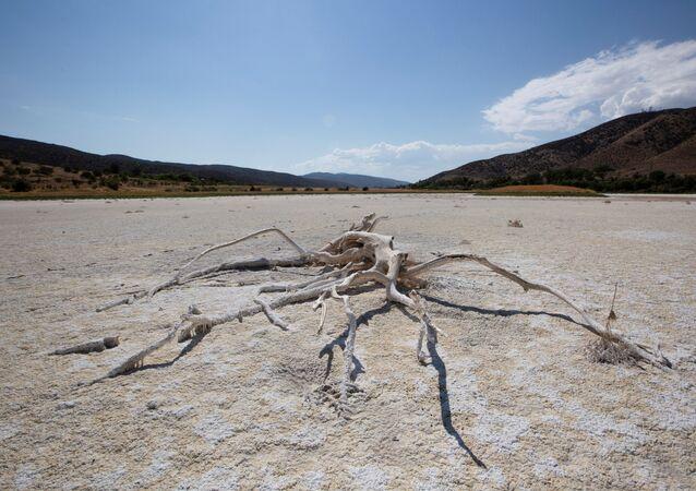 ABD'nin batı yakasında aşırı sıcak-kuraklık döngüsünde kuruyan Elizabeth Gölü (Los Angeles, Kaliforniya)