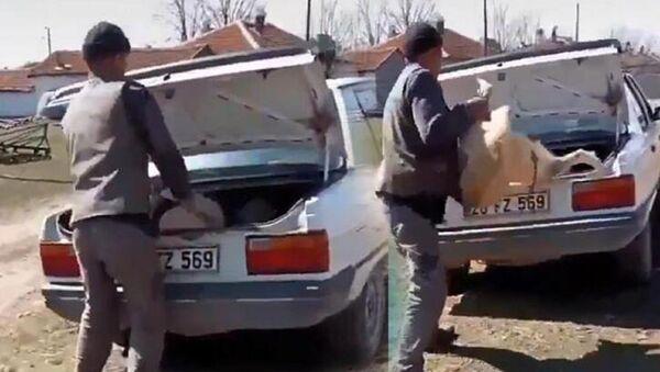 Köpeğin bagaja kilitlenmesi - Sputnik Türkiye