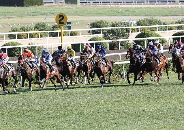 'Türk at yarışçılığının derbisi' bu yıl da seyircisiz yapılacak