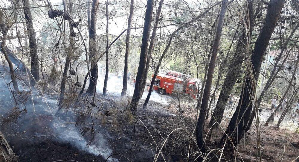 Fethiye orman yangını
