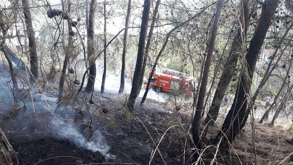 Fethiye orman yangını - Sputnik Türkiye