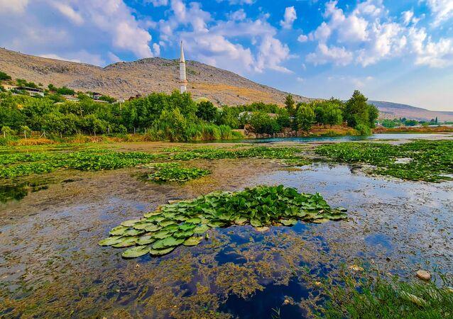 Kahramanmaraş'ta bulunan Nilüfer Gölü ve çevresinde bulunan nilüfer çiçeği kirlilik nedeniyle yok olma tehlikesi karşı karşıya kalırken, gölün koruma altına alınması istendi.
