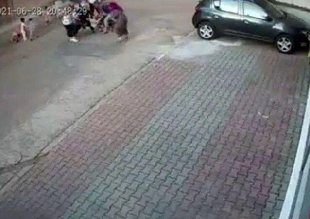 çocuğa saldıran köpek