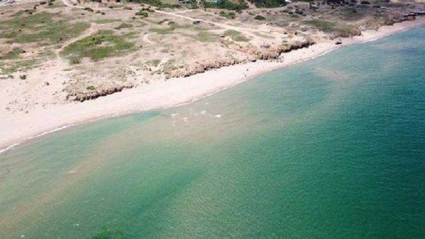Şile Alacalı Sahili, kahverengi deniz