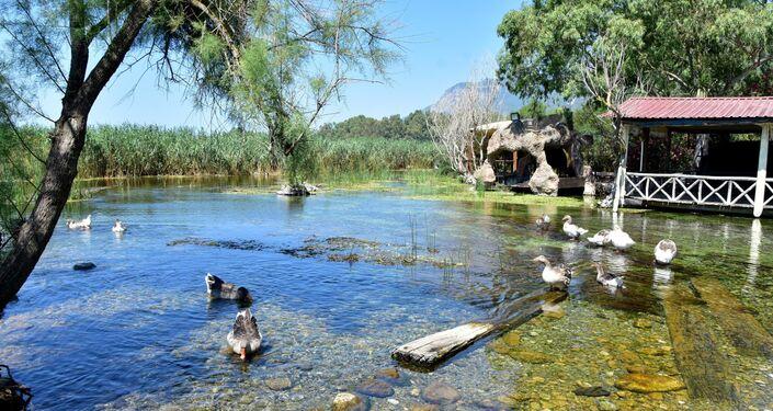Cittaslow Uluslararası Koordinasyon Komitesi'nce 2011 yılının Haziran ayında 'Sakin Şehir' ilan edilen Akyaka Mahallesi'nde su altı bitki örtüsü, elle tutulabilecek hissini veren balıklar ile doğal akvaryum görüntüsü oluşturan Kadın Azmağı, dünyayı etkisi altına alan kuraklıktan etkilendi.
