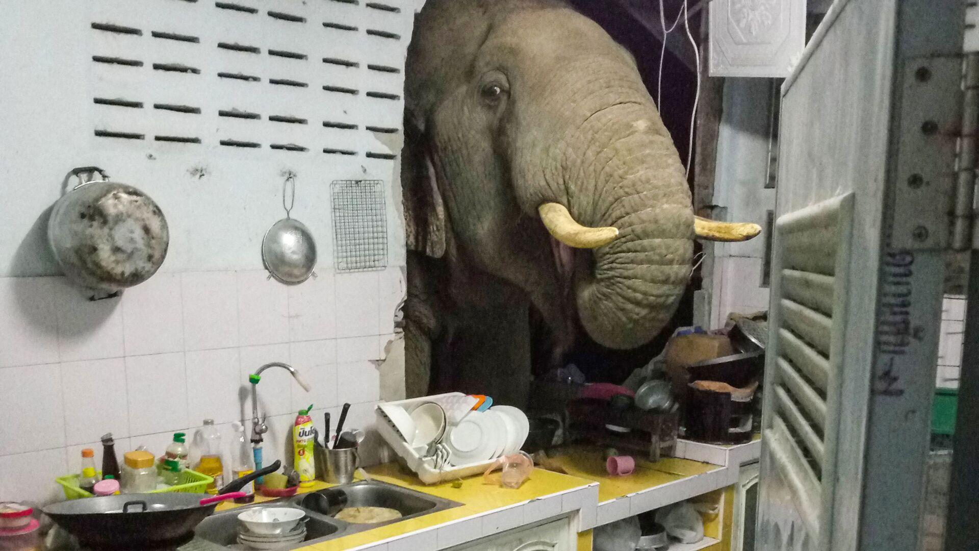 Radchadawan Peungprasopporn'un Facebook hesabında paylaştığı evinin mutfak duvarını yıkan Plai Bunchuay isimli 40 yaşındaki erkek fil - Sputnik Türkiye, 1920, 25.07.2021