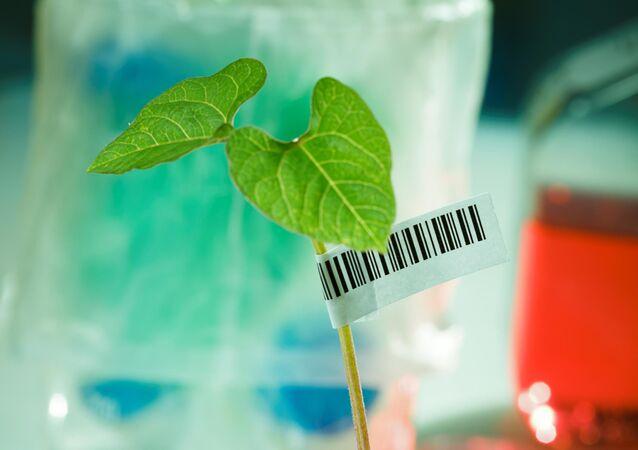 DNA Barkodlama yöntemiyle bitkilere kimlik