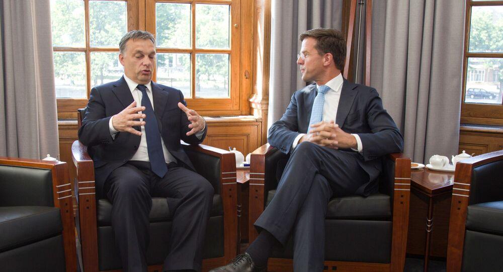 Victor Orban ile Mark Rutte (sağda)