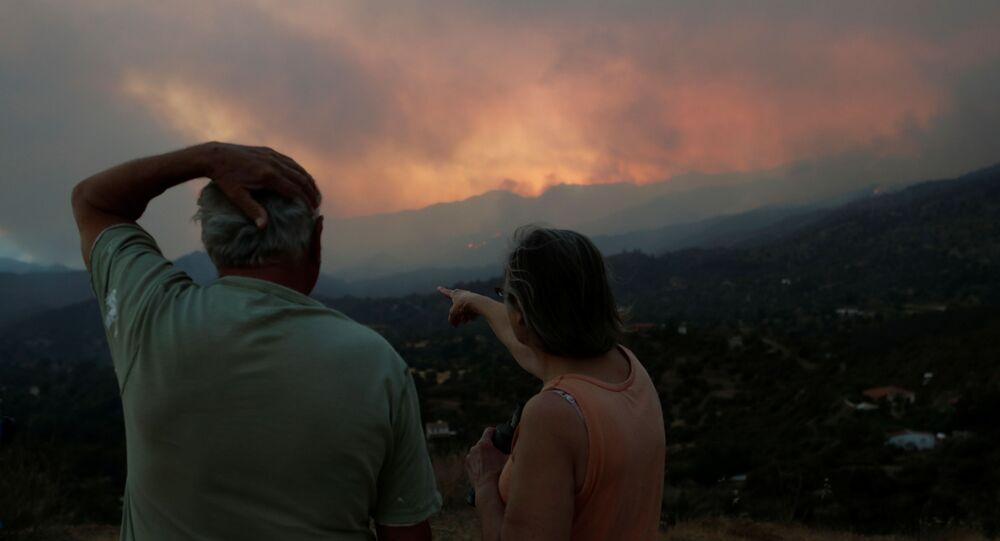 Güney Kıbrıs'ta Larnaka'nın ormanlık bölgesine yayılan yangına endişeyle bakan bir çift (3 Temmuz 2021)