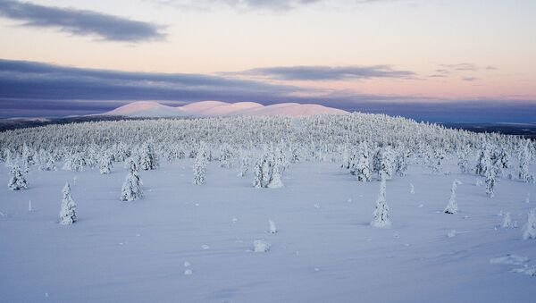 Finlandiya - Laponya - Sputnik Türkiye
