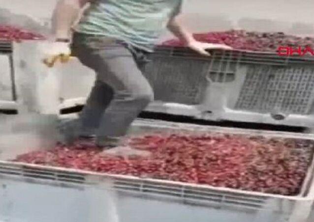 Meyve suyu yapılacak vişnelerin ayakkabıyla çiğnendiği görüntülere para cezası