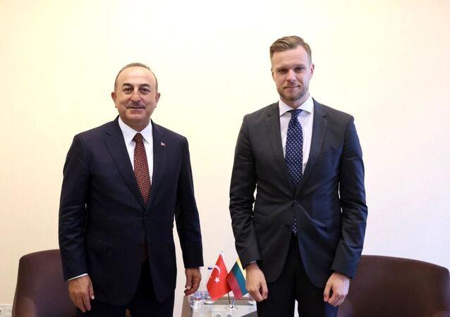 Litvanya Dışişleri Bakanı Gabrielius Landsbergis, Dışişleri Bakanı Mevlüt Çavuşoğlu